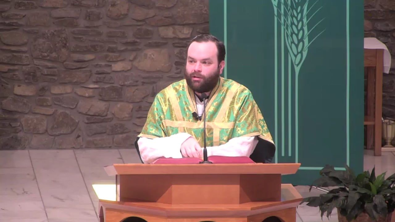 Fr. Adam's Homily - 27th Sunday in Ordinary Time