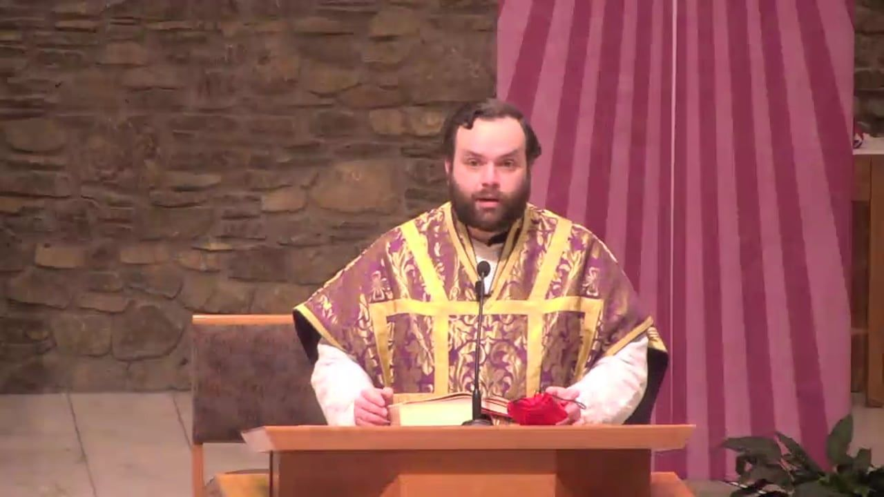 Fr. Adam's Homily - 2nd Sunday of Advent | Homilía del Padre Adán - Segundo Domingo de Adviento
