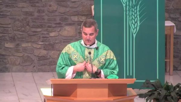 Fr. Pete's Homily - 24th Sunday in Ordinary Time